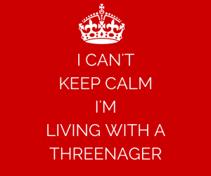 I-CANT-KEEP-CALM-IM-LIVING-WITH-A-THREENAGER